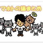 マホトが飼っている猫は何匹?名前は?まとめてご紹介!